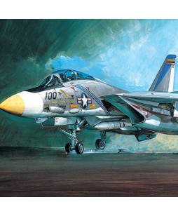 Academy modelis F-14A 1/48