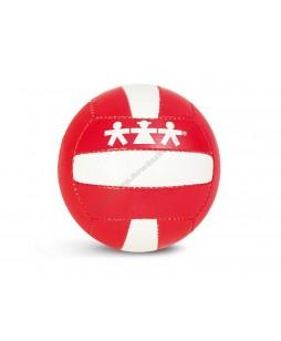 Tinklinio kamuolys (4 dydis).